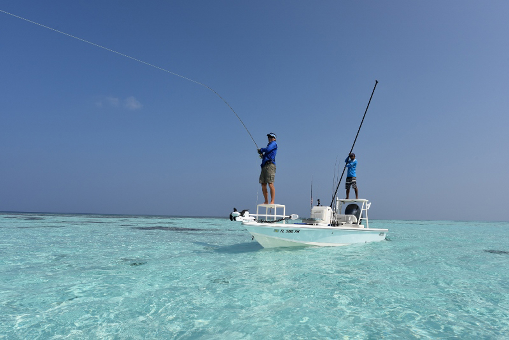 Fly fishing, Maldives, atoll, COMO, Indian Ocean